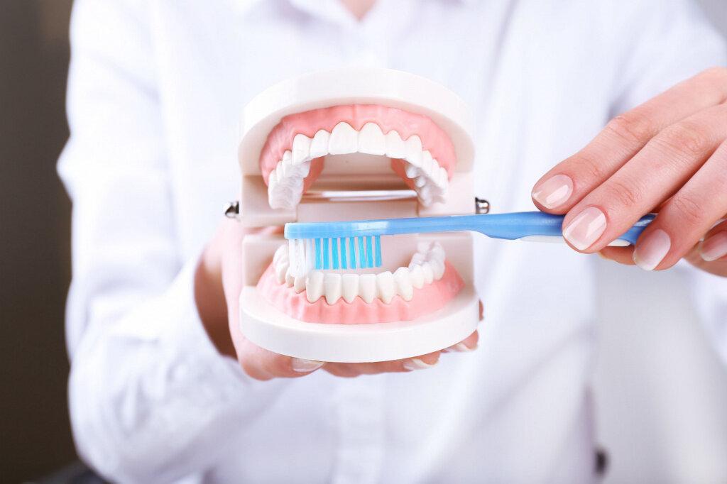 Как часто нужно проводить чистку зубов у стоматолога